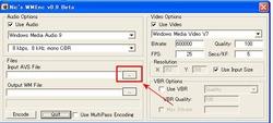 Input AVS File