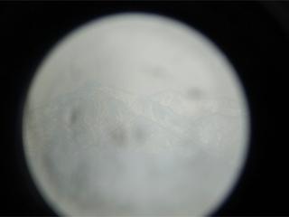 65abf126.jpg