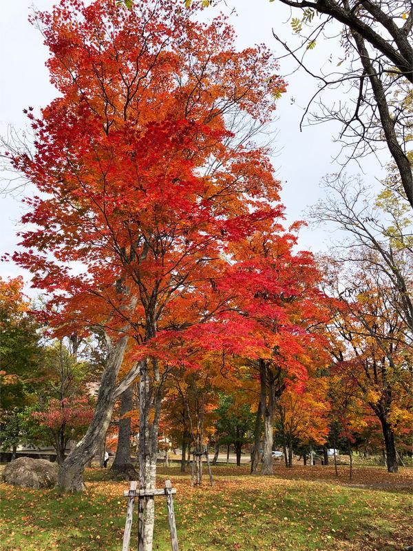 06糠平温泉公園_3