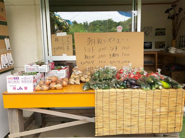 17朝取り野菜も売ってます