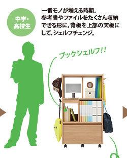 生ごみ用ゴミ箱の選び方! ブラバンシア、シンプルヒューマンがお薦めです。
