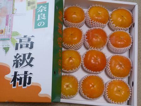 20161121 奈良の柿01