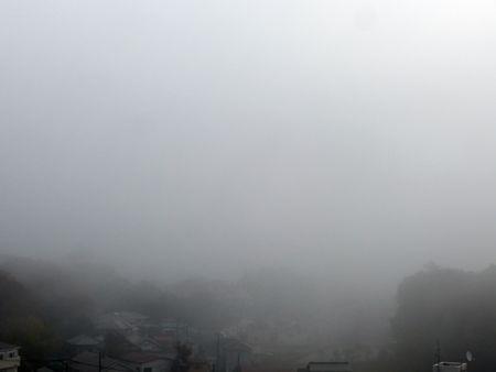 20161120霧のち晴れ01