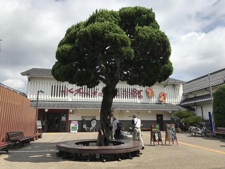20170817鳥取15