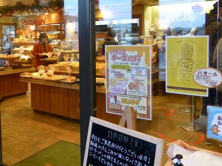 20161111タマネギ苗10ピーターパン