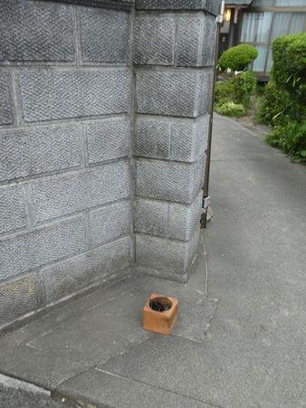 20170814鳥取へ12