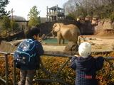 動物園3−1