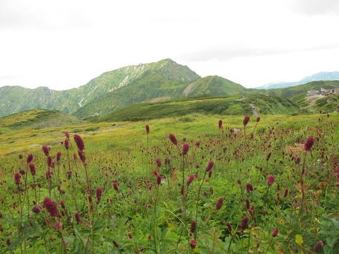 201209立山黒部 058