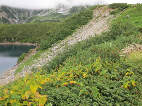 201209立山黒部 062