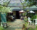 石井農園1