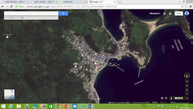 �衛星写真