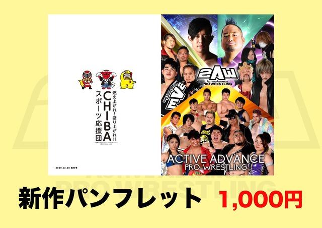 20201228〜新作パンフレット