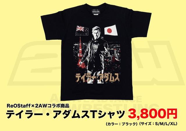 20210214〜テイラーTシャツ