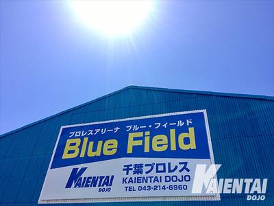 K-DOJO_bluefield