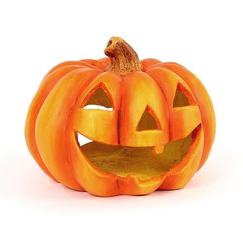 pumpkin-786668_640