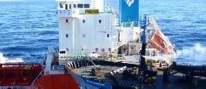 シーシェパード、日本と和解も妨害は継続【海外の反応】