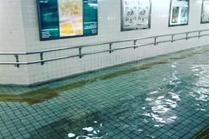 どういう原理だw洪水なのに日本の水が綺麗すぎる~【海外の反応】
