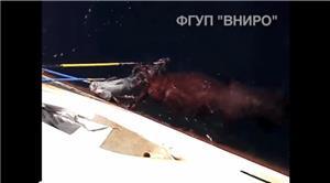 世界最大ダイオウホウズキイカの生きた姿を撮影することに成功【海外の反応】