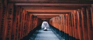 見たら絶対行きたくなる!日本の美しい写真37選【海外の反応】