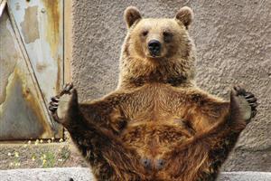 ジュラシックパーク!?クマとの激闘を繰り広げる日本人【海外の反応】