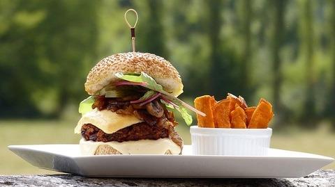 burger-gec1a25f7a_640