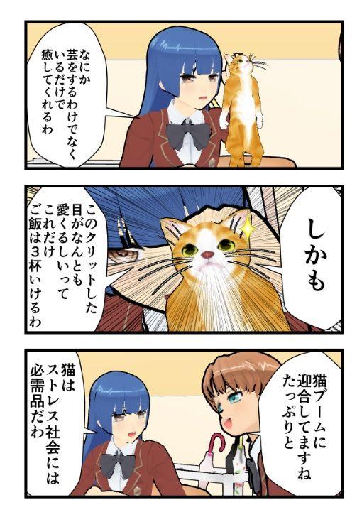 猫ブーム2
