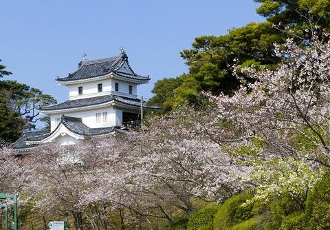 平戸城・桜500