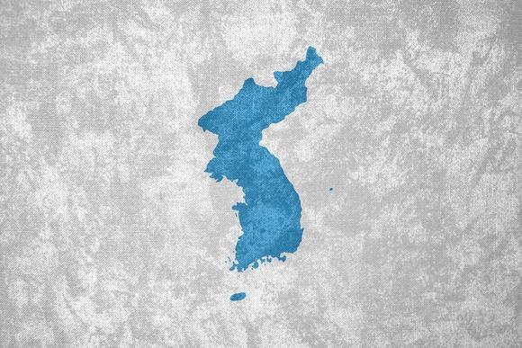 韓国人「統一費用は日本が負担しなければならない」