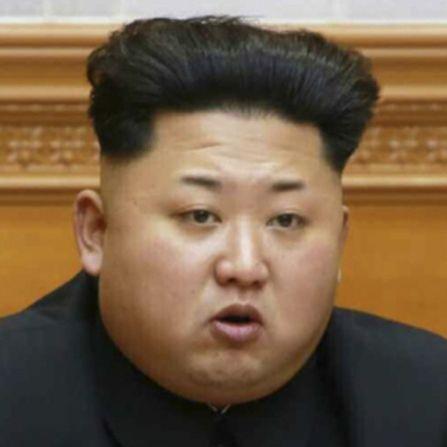 韓国人「金正恩委員長のダイエットを請願します」