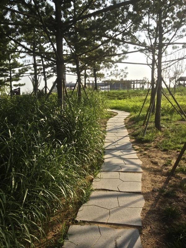 韓国の街角の風景-25