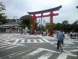 2008年7月1日鶴岡八幡宮七夕飾り