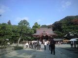 2008年11月18日鶴岡八幡宮
