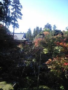 2010年11月19日円覚寺