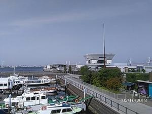大桟橋を臨む