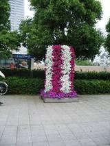 2007MAY24みなとみらいの花柱