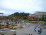 2008年11月8日 学園祭と紅葉