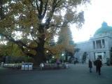 2008年11月13日夕闇の上野国立博物館