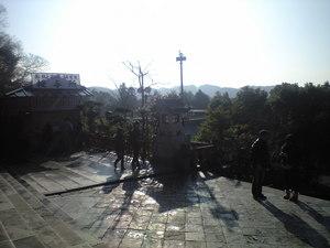 2009年12月28日鶴岡八幡宮1