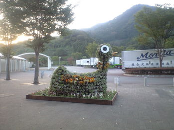 2009年10月13日談合坂の花あひる