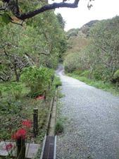 瑞泉寺 下の庭園