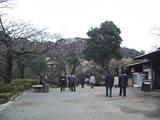 2007Jan26三渓園 梅が咲いてる!