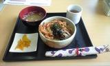 2008april26小丼