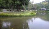 2008MAY18 阿字が池と黄色い菖蒲