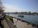 2009年4月3日隅田川桜2