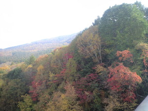 2010年10月17日紅葉の山八千穂高原