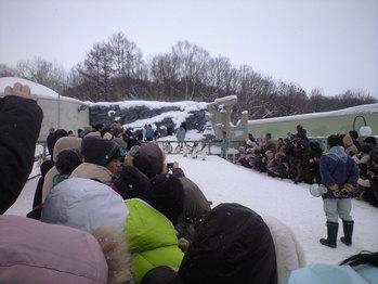 2010年2月8日ペンギン散歩開始