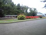 2008年11月10日京都府立植物園