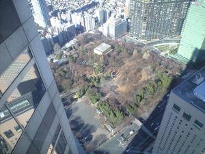 2011年1月18日新宿中央公園