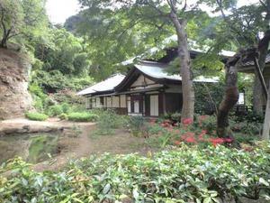 夢想国師庭園4