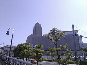 横浜税関塗り替え中